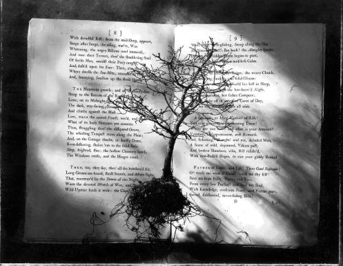 Kernan_Books_17